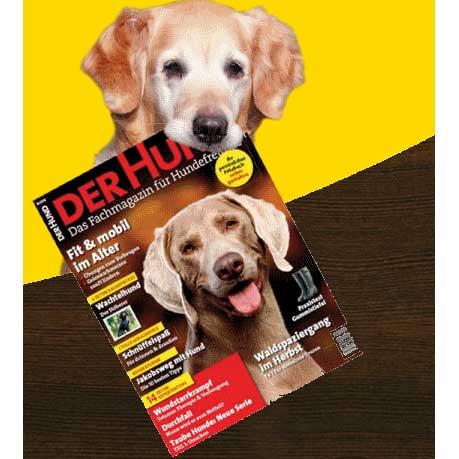 der-hund-zeitschrift