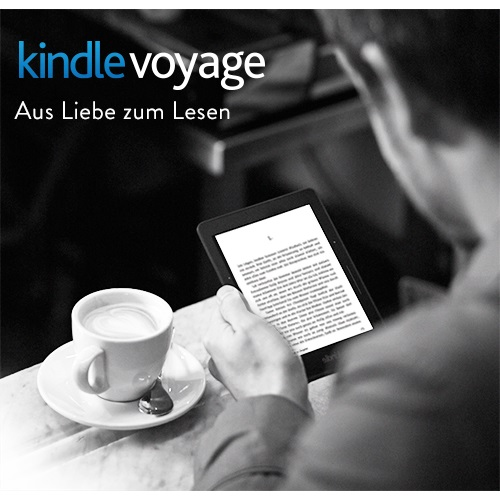 Kindle Voyage Paperwhite-Display