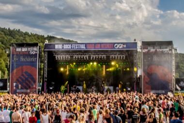 380_271_pimg_181_c0_2014_02_mini-rock-festival
