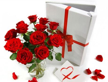 12-rote-Rosen-für-299€-bei-brands4friends-nur-für-Neukunden