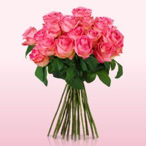 2016-10-04-11_06_25-lovely-pink-rosa-rosen-mit-limonium