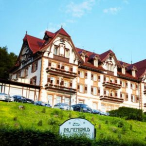 2016-09-06 13_05_42-Wellnesshotel Palmenwald____ _ Travador.com Kurzreisen