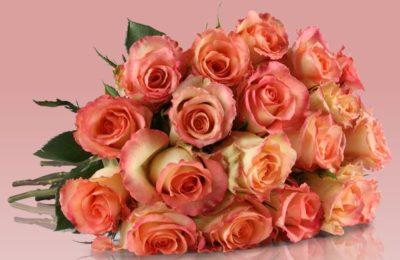 2016-09-19-12_01_35-graceful-rose-blumenarrangement-mit-rosa-rosen