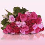 2016-10-31-11_25_01-pretty-pink-blumenarrangement-mit-pink-roten-rosen