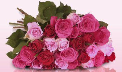 2016-10-31-11_25_20-pretty-pink-blumenarrangement-mit-pink-roten-rosen