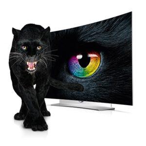 eg9609-large-panther-02