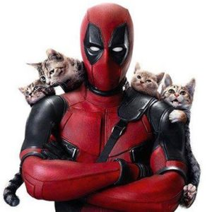 deadpool-caturday-header-168596