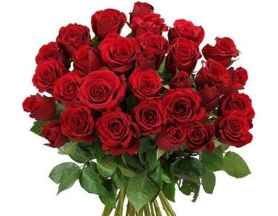 2016-11-14-11_51_34-40-rote-rosen-online-bestellen-und-verschicken
