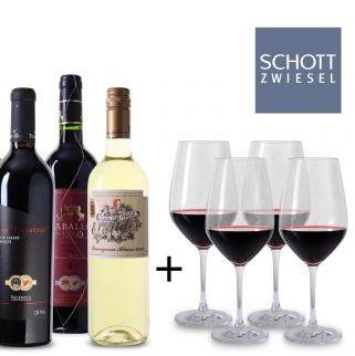 Wein Probierpaket Spanien 4 Glaeser x
