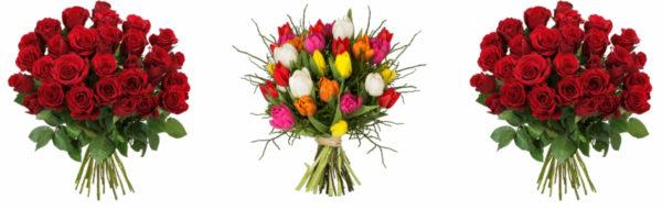 Blumeideal Valentinstag 14 Prozent Rabatt 2