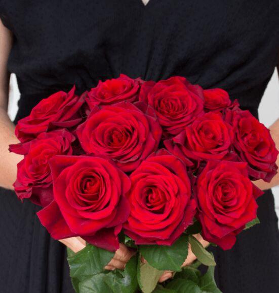 naomi rosen