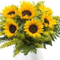 XXL Sonnenblumen Strauss Blumeideal