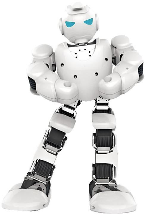 Ubtech Robo