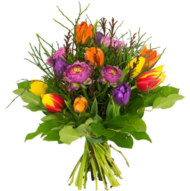 2018 02 21 16 19 40 Tulpenstrauß  Fruehlingserwachen  Blume Ideal