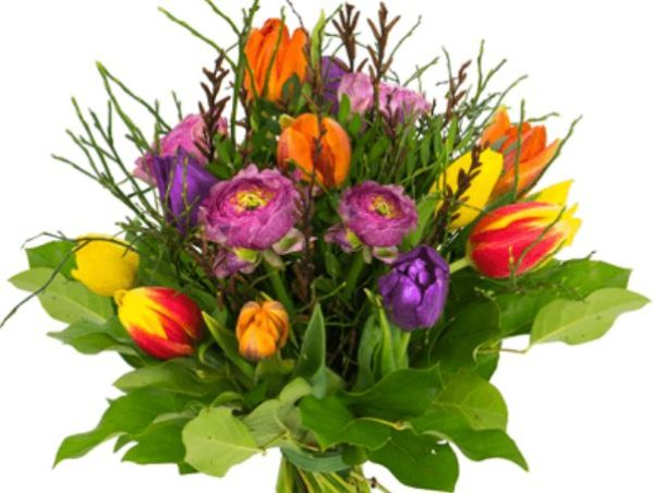 2018 02 21 16 19 40 Tulpenstrauss Fruehlingserwachen  Blume Ideal 1
