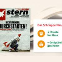 Stern Abo 13 Ausgaben 65 Euro mit 65 Euro Verrechnungsscheck