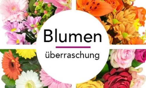 Blumenueberraschung bestellen Blumeideal