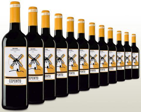 Samtiger Rotwein trocken Topseller Tempranillo aus Spanien 12 Flaschen Wein 2