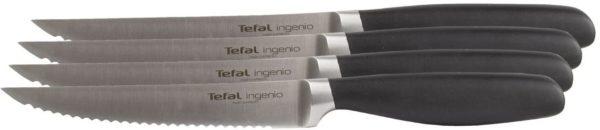 Tefal Ingenio Steakmesser Set