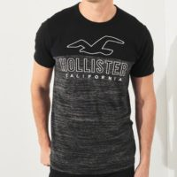 Hollister Sale 2