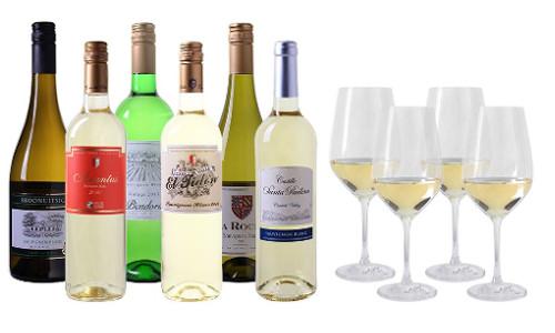 Wein Probierpaket Sauvignon Blanc mit 4 Glaesern 1