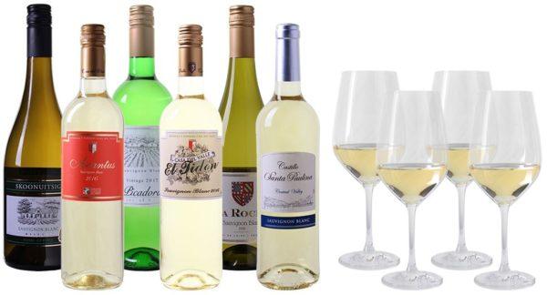 Wein Probierpaket Sauvignon Blanc mit 4 Glaesern