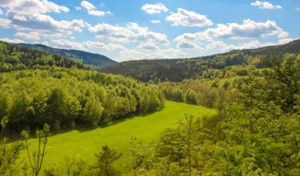 Wellness am Thueringer Wald Travelbird 3
