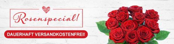 Lidl Blumen Rosen Special Rosen ab 17 99 Euro