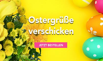 osterbanner Blume Ideal 1 1