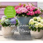 Dehner: 10% Gutschein für frische Pflanzen