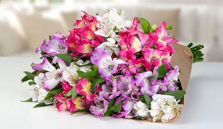 2019 05 08 12 23 29 Blumenstrauss Fuer meinen Star Lidl Blumen
