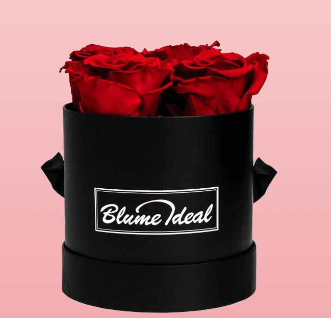 rosenbox