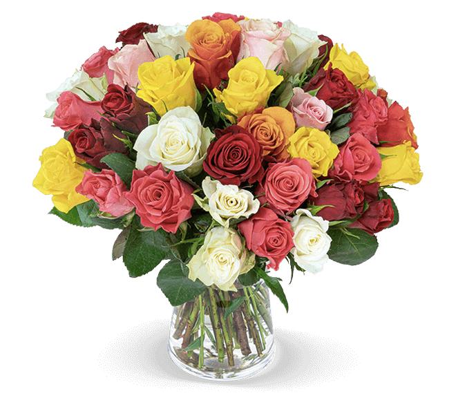 45 bunte Rosen im Angebot online bestellen BlumeIdeal.de 2019 10 15 11 14