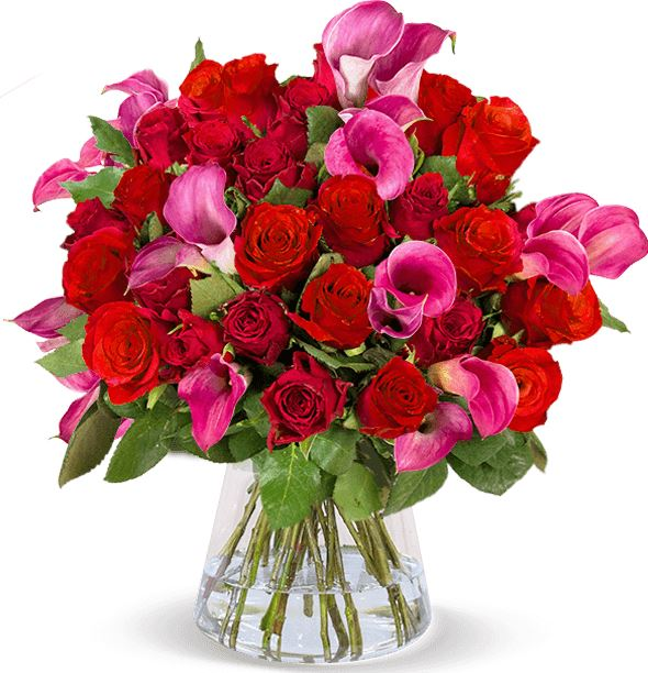 2019 09 20 11 39 09 Rosenarrangement Tropical LOVE online versenden BlumeIdeal.de