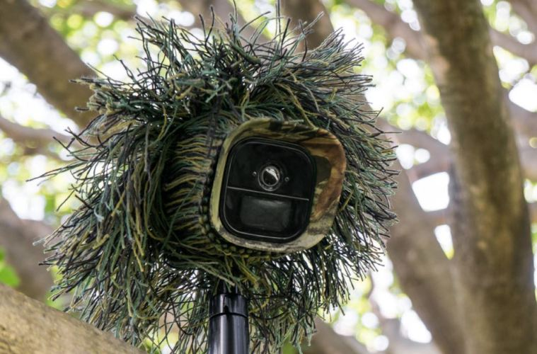 Arlo go tree