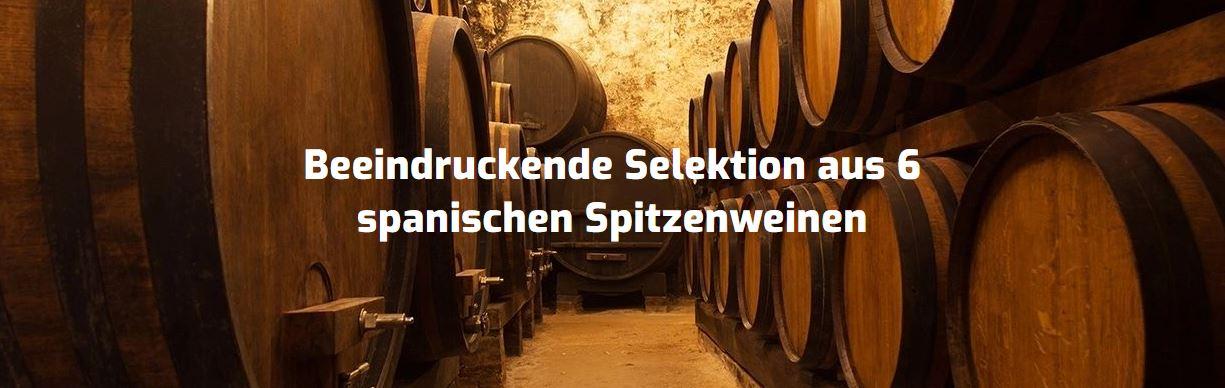 Wein Probierpaket Bestseller aus Spanien 1