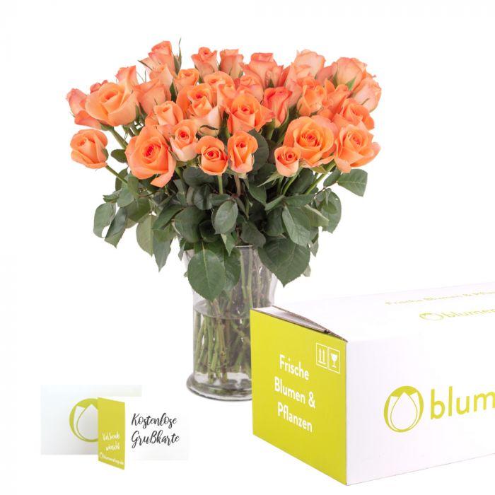 20190100 40 rosen orange box