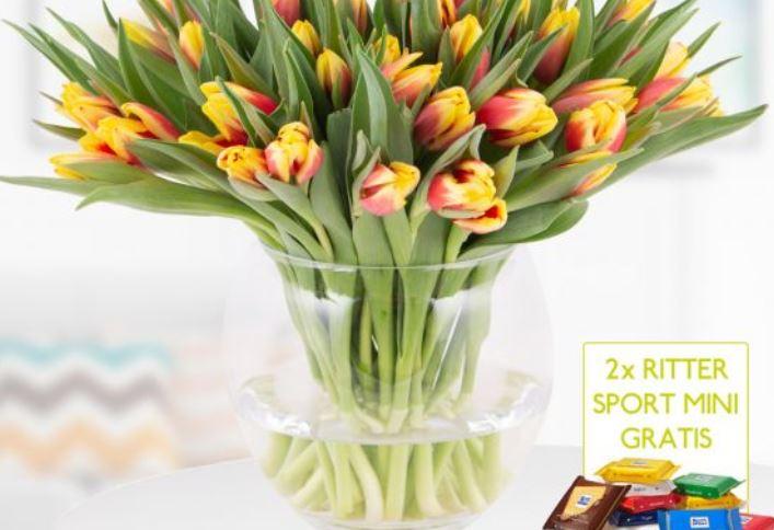 40 zweifarbige Tulpen rot gelb  2 gratis Mini Schokis 1