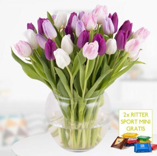 Tulpen Blumenshop 1