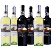 Wein Probierpaket Luca Maroni