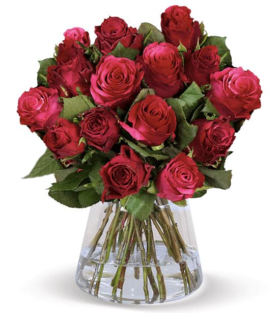 18 rote Rosen zum Valentinstag bestellen   BlumeIdeal.de 2020 02 05 15 41