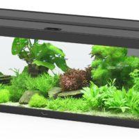 Dehner Aqua Premium Aquarium Set ProLine 100   Dehner