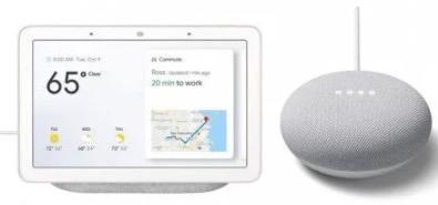 Google Nest Hub  Google Nest Mini