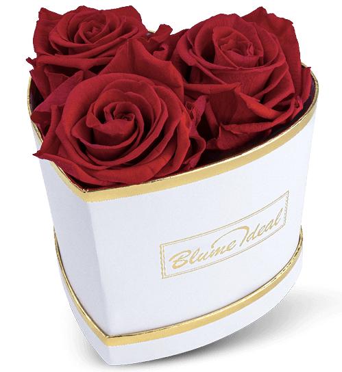 Rosenbox Valentine Lovebox zum Valentinstag 2020 02 05 15 43