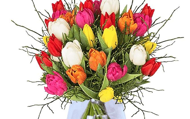 Blumenstrauss ab 22 Euro