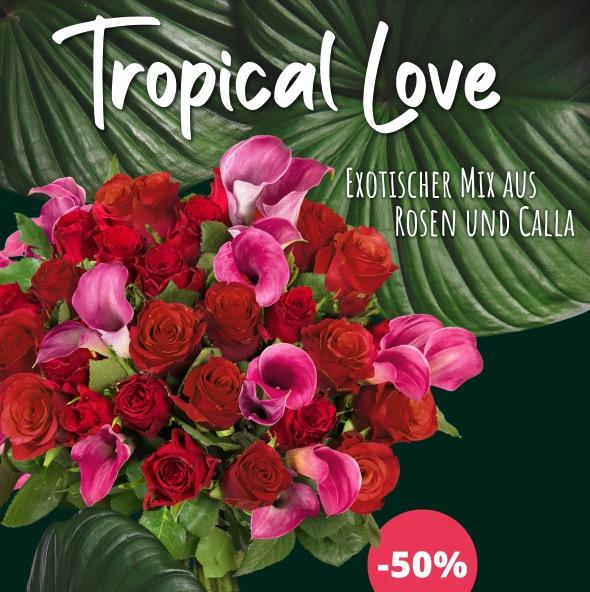 Tropical Love Blumen
