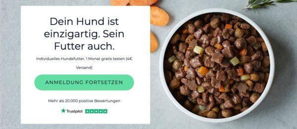 Gratis 4 Wochen lang Hundefutter   von Tails.com
