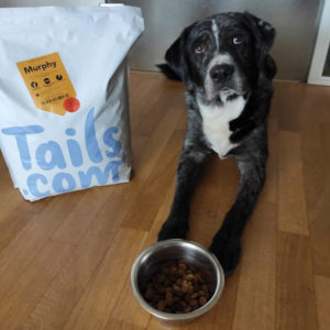 Gratis 🐶🍲 4 Wochen lang Hundefutter von Tails.com