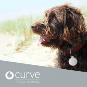 15€ Amazon-GS 🔑 Curve smarter GPS-Tracker 🐶 mit Bluetooth (für Hunde, Schlüssel etc.)