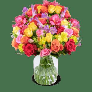 37 Rosenglück XXL mit über 200 Blüten